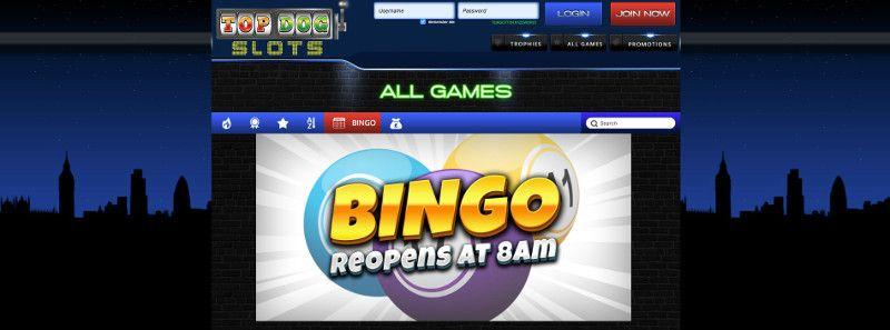 Bingo at Top Dog Slots