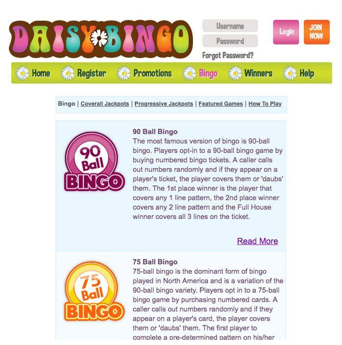 Bingo at Daisy Bingo