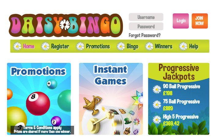 Daisy Bingo Screenshot